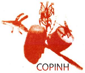 logo_COPINH